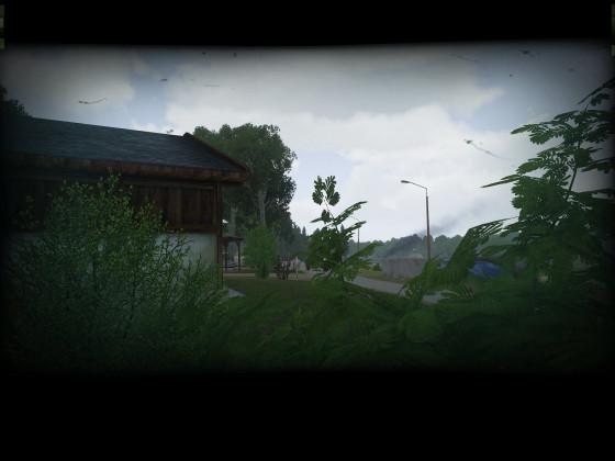 Operation Palatine Shield 12.08.2020 - POV: Büffel pirscht sich an