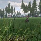 """""""Operation Timber Wolf"""" - Sicherung der Landezone"""