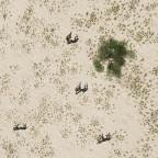 25.08.2021   Operation Crossfire #1   Schattenspiele