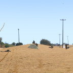 Dune Walker 19-06
