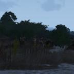 Ein wildes Squad auf der Suche nach Feinden